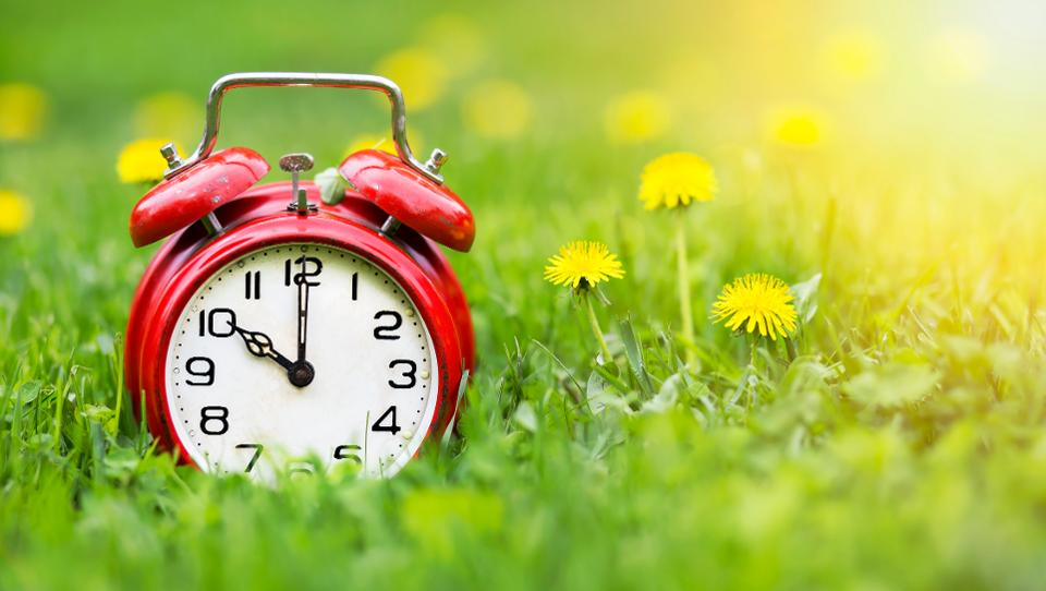 red alarm clock on a field of flowers