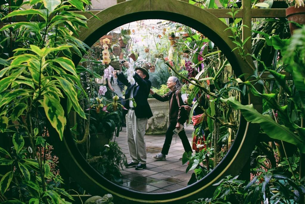 Conservatory of Flowers - Golden Gate Park