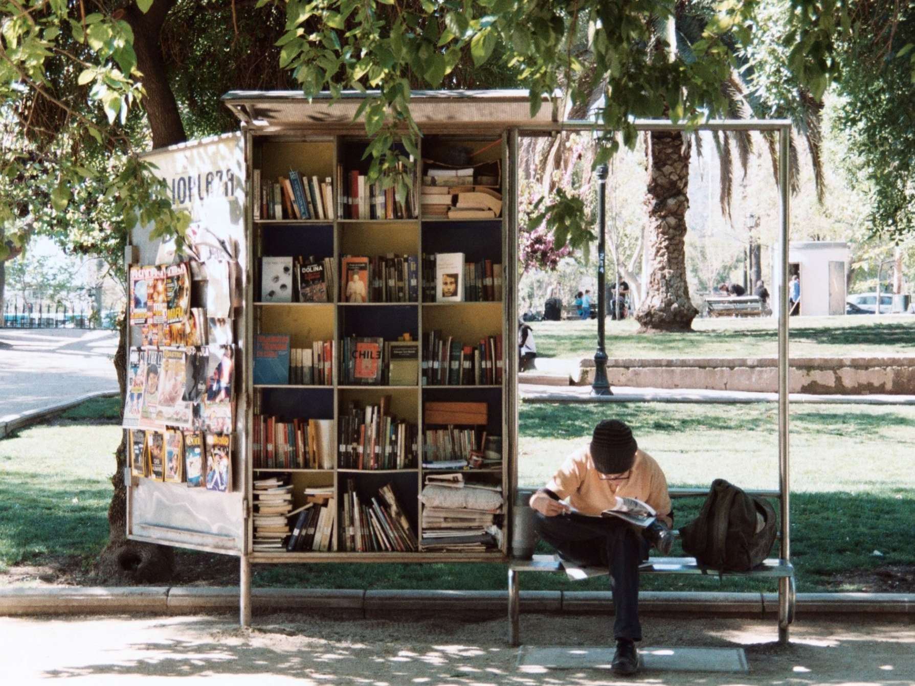 boy reading beside bookshelf in the park