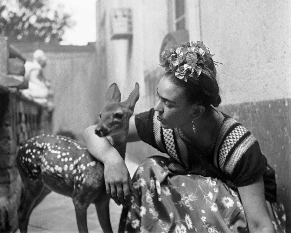 pets in art-kahlo-artsy