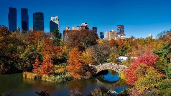LAN-Central Park-Central Park Tours