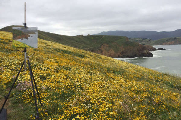 AEM-Spring Landscape Painting 1
